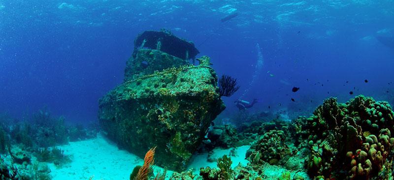 scuba diving inspiration