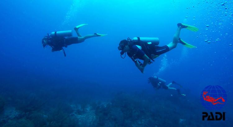 padi certified scuba divers